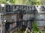 Borzasztó titkot őriz ez a híd: Kutyával sokan elkerülik