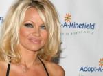 Elsétálnál mellette, annyira felismerhetetlen lett Pamela Anderson - Fotók