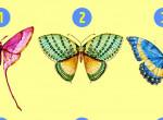Melyik pillangó tetszik a legjobban? Ezt a titkot árulja el rólad