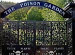 Gyilkos kert: Egy hely, ahol egyetlen növény érintése is halálos lehet!