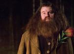 Nagyon lerobbant - Így néz ki ma a Harry Potter Hagridja