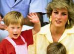 Kitálalt Diana hercegnő inasa: Megnevezte Harry herceg igazi apját