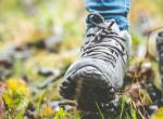 Nehéz elhinni, hogy napi 30 perc séta ezt képes tenni a testünkkel