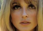 A Sharon Tate-ügy - Így történt Amerika legmegrázóbb gyilkossága
