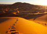 8+1 érdekesség a Szaharáról – tényleg ez volna a Föld legnagyobb sivataga?
