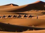 Különleges sivatagok: Ott is vannak, ahol nem gondolnád