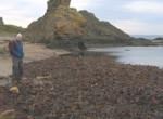 Azt hitték, egyedül vannak a parton, a fotón mégis durva dolgot láttak
