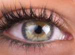 Hiába a szérum és a növesztő szer, ekkorára nő meg maximum a szempillánk