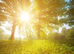 Hétvégén sokat látjuk majd a napot - a hőmérséklet a 20 fokot is megközelítheti