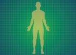 Van két testrészünk, amelyik életünk végéig folyamatosan nő