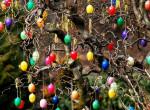 Hihetetlen, milyen rekordra készül Dunaföldvár: Így várják a húsvétot!
