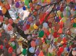 7 ezer színes tojással díszítettek fel egy fát a magyar településen - Fotók