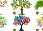 Te melyik fát választanád? Ennyi mindent elárul rólad a döntésed