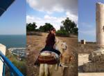 4 nap a datolya és az olajfák országában - Ilyen Tunézia egy európai szemével