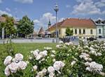 A te lakhelyed nevezett már? - 25 éves a Virágos Magyarország verseny