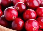 Finom és egészséges – Ismerd meg a vörösáfonya jótékony hatásait!
