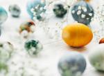 Tojásfestő trendek - legyen a tiéd a legszebb húsvéti dekoráció