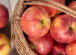 Az alma tényleg távol tartja az orvost? Itt az igazság a híres mondásról