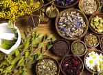Enyhítik a tüdő irritációját - Íme a leghatékonyabb gyógynövények fulladás ellen