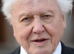 David Attenborough, aki 90 felett is Guiness-rekordot tudott dönteni