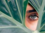 Ilyen egy hasznos kezdeményezés: a LUSH beauty-márka ismét a jó ügyért harcol