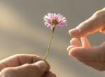 Neked milyen formájú a hüvelykujjad? Ezt árulja el személyiségedről!