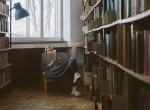 Ne a kötelező alapján ítélj - Ezért érdemes újra felfedezni iskolai olvasmányainkat