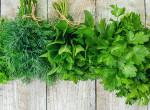 Csodaszer a kertből – Sosem gondolnád mi mindenre jó ez a növény