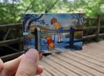 Árverésre bocsátják Micimackó ikonikus hídját – varázslatos az erdőben megbúvó átkelő