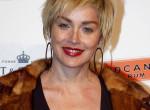Címlapon mutatta meg feszes combjait a 63 éves Sharon Stone - Fotó