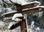 Téli csodavilág Magyarországon: gyönyörű képeken a frissen behavazott táj