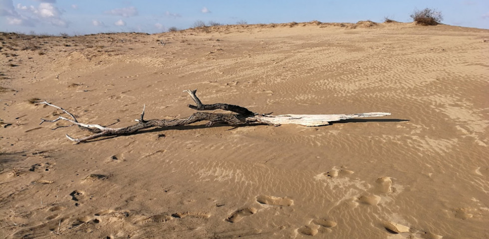 Hihetetlen: Sivatag született Magyarország közepén!