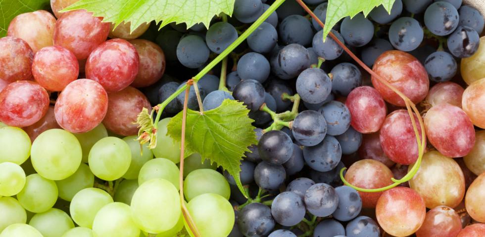 Ne csak szemezgesd, főzd is meg: 8 ínycsiklandó szőlős recept!
