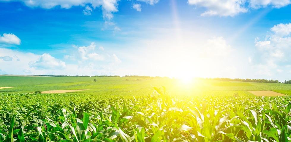 Közelít az újabb hidegfront, de ma még a napsütésé lesz a főszerep